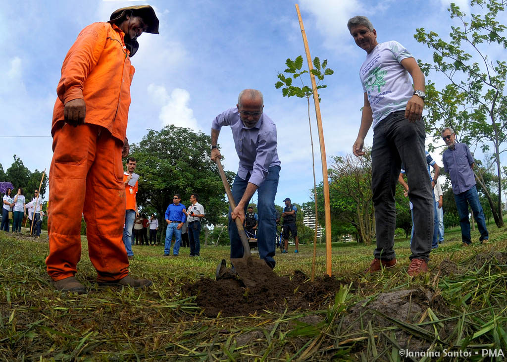 Edvaldo inicia programa de arborização de Aracaju